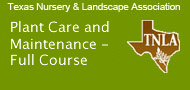 Plant Care and Maintenance - Full Course-