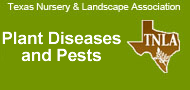 Plant Diseases and Pests Section-